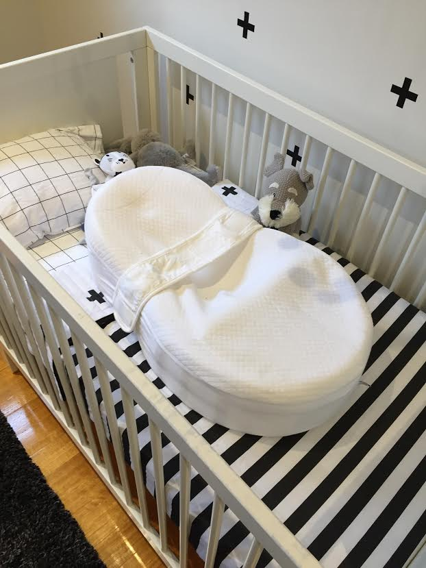 cocoon-in-cot.jpg